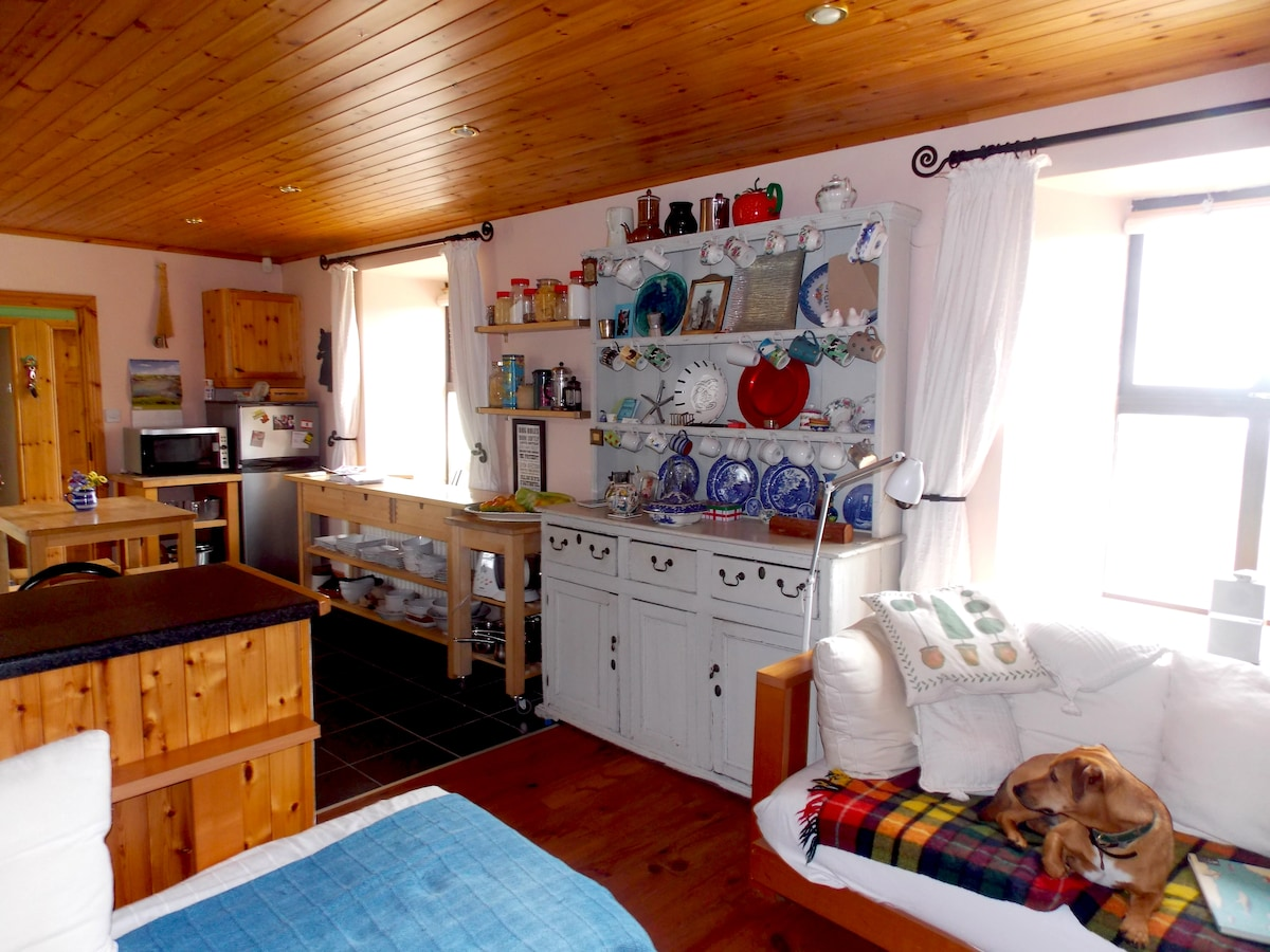 Kitchen/sitting room with antique pine dresser and Oliver