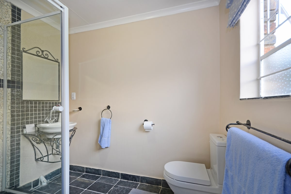 View of bathroom with shower attached to bedroom