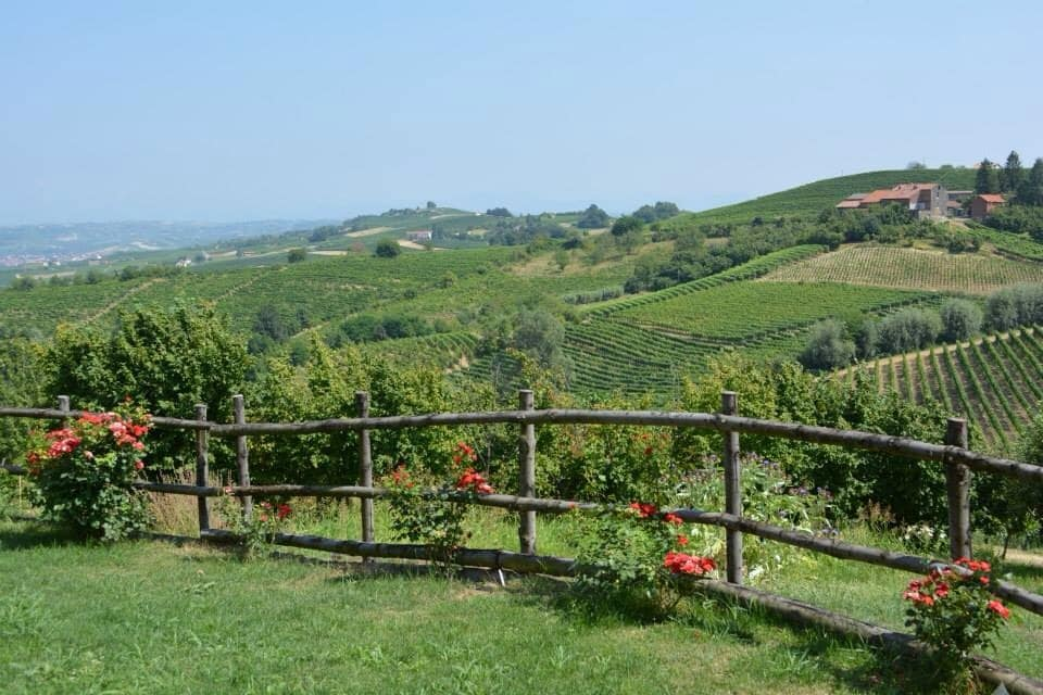 Vineyards, Thermae and Relax