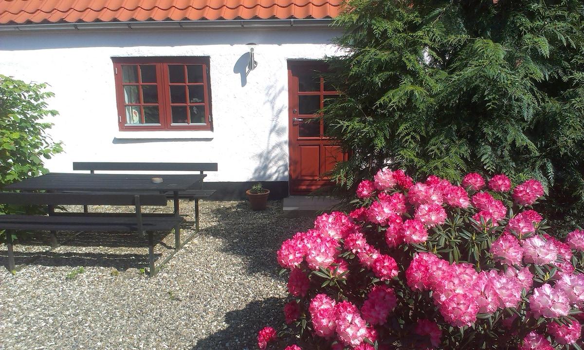 Stay at cosy Danish Vineyard