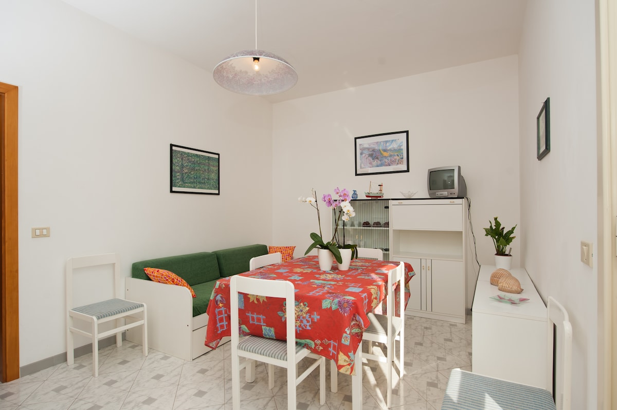 Apartment a few meters from the sea