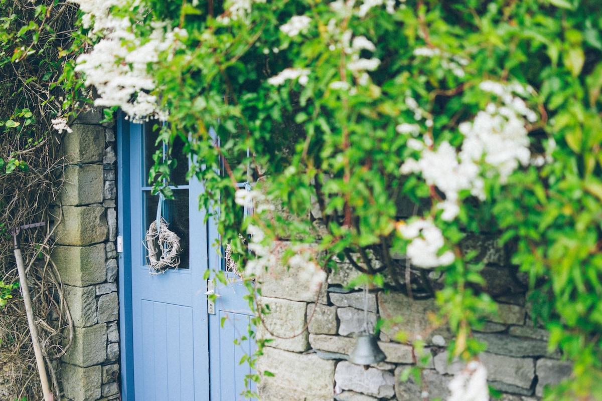 Umbles of Russian vine around the front door