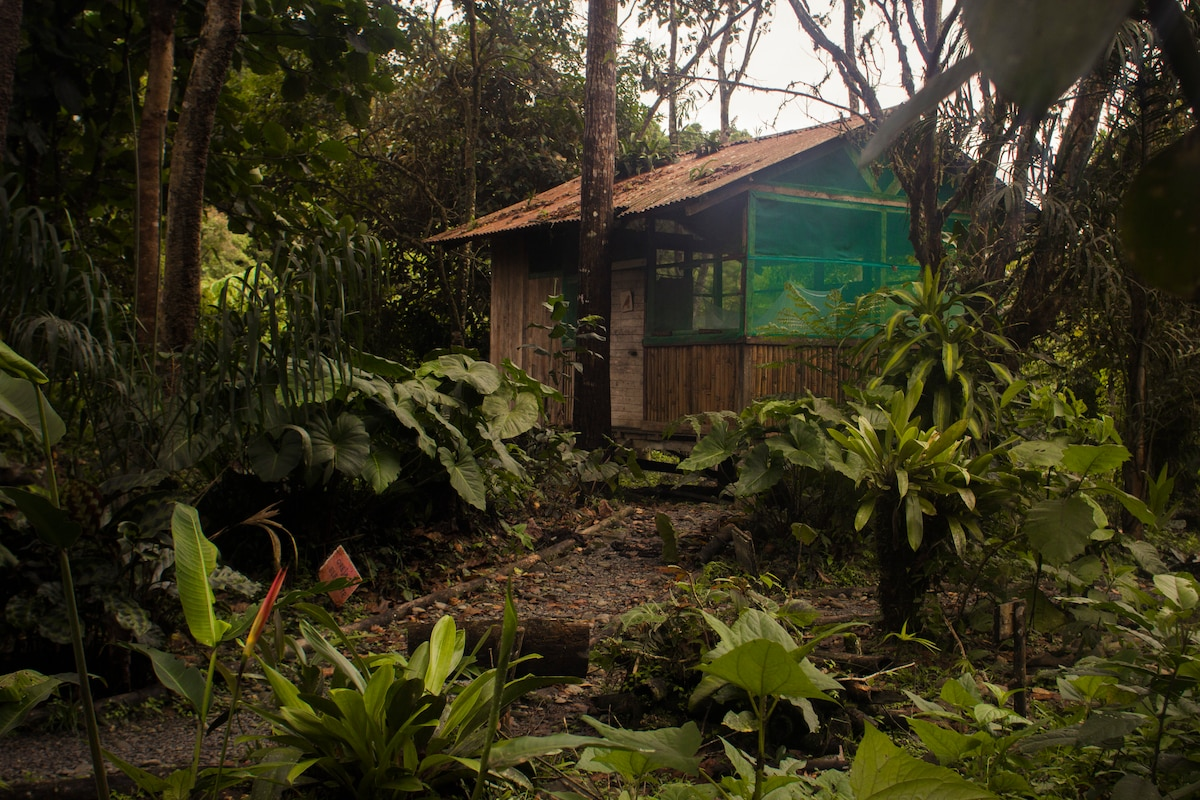 Reserva Ecológica Chontachaka