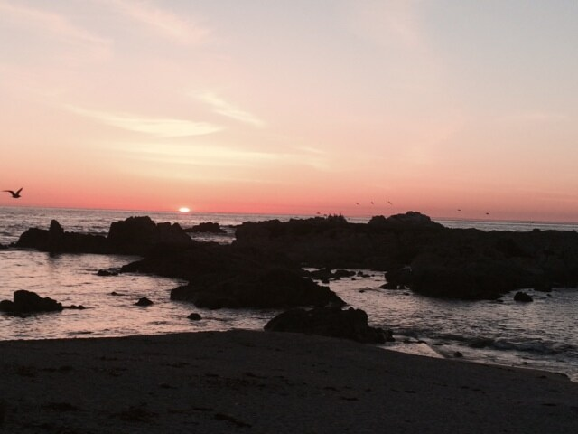 Pacific Grove/Pebble Beach