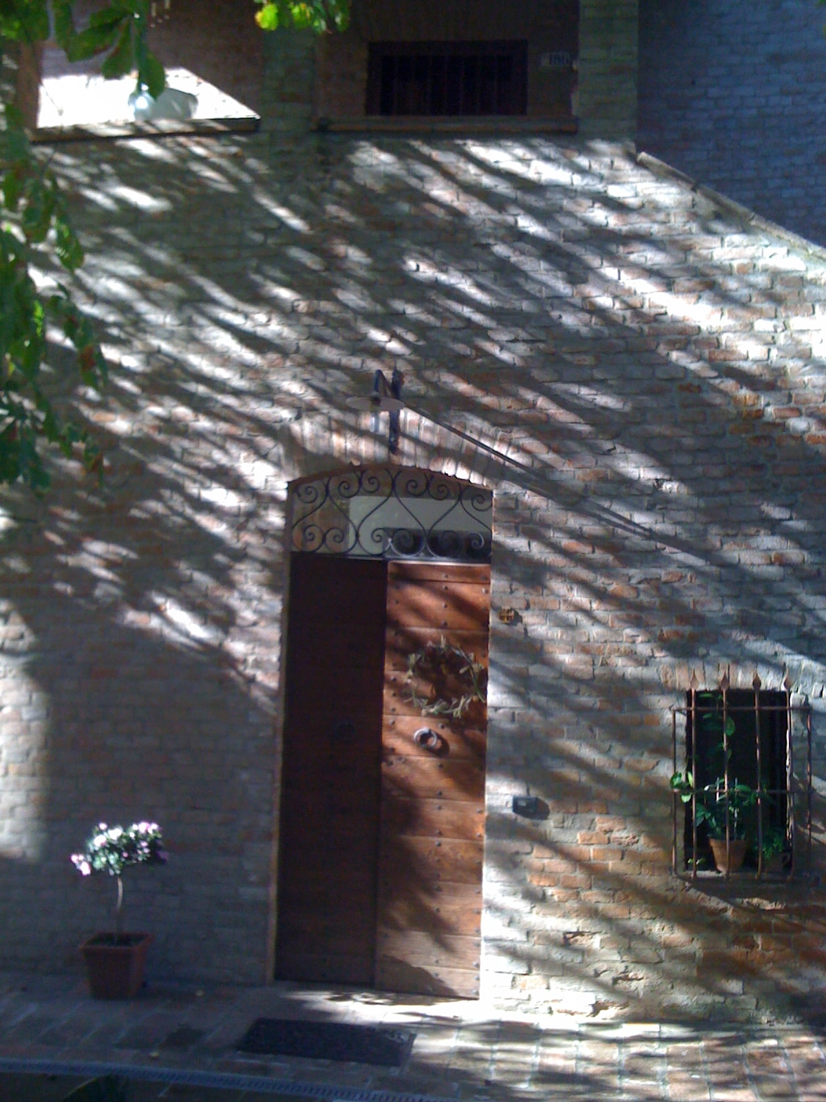 ombre dell' ippocastano davanti casa