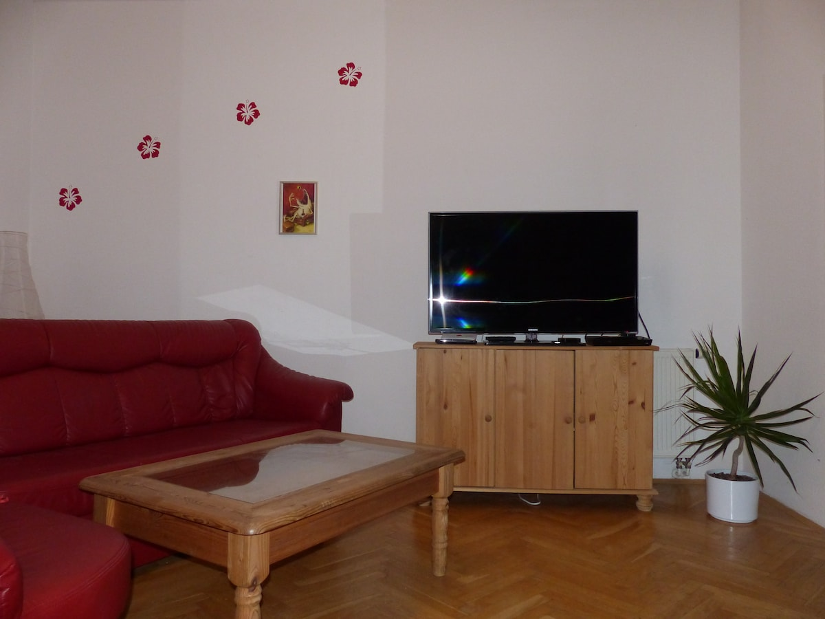 large plasma TV