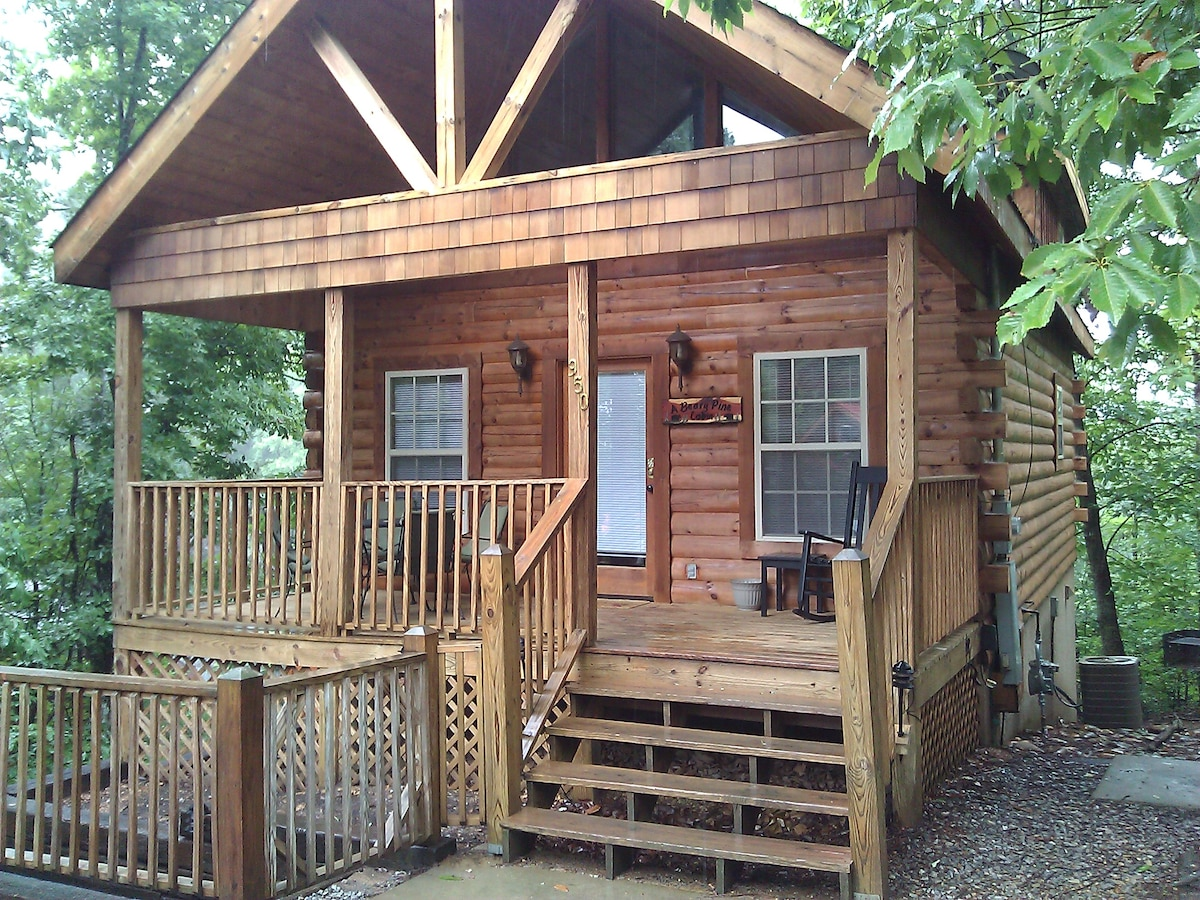 A Beary Pine Cabin near Dollywood!