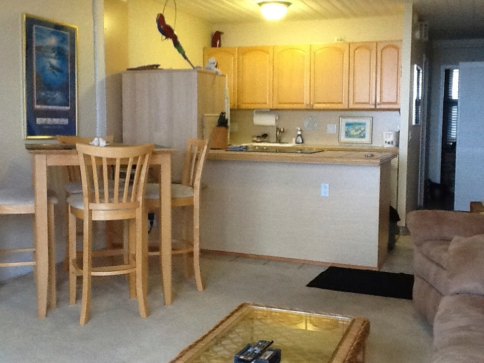 View from couch to dining area and kitchen.