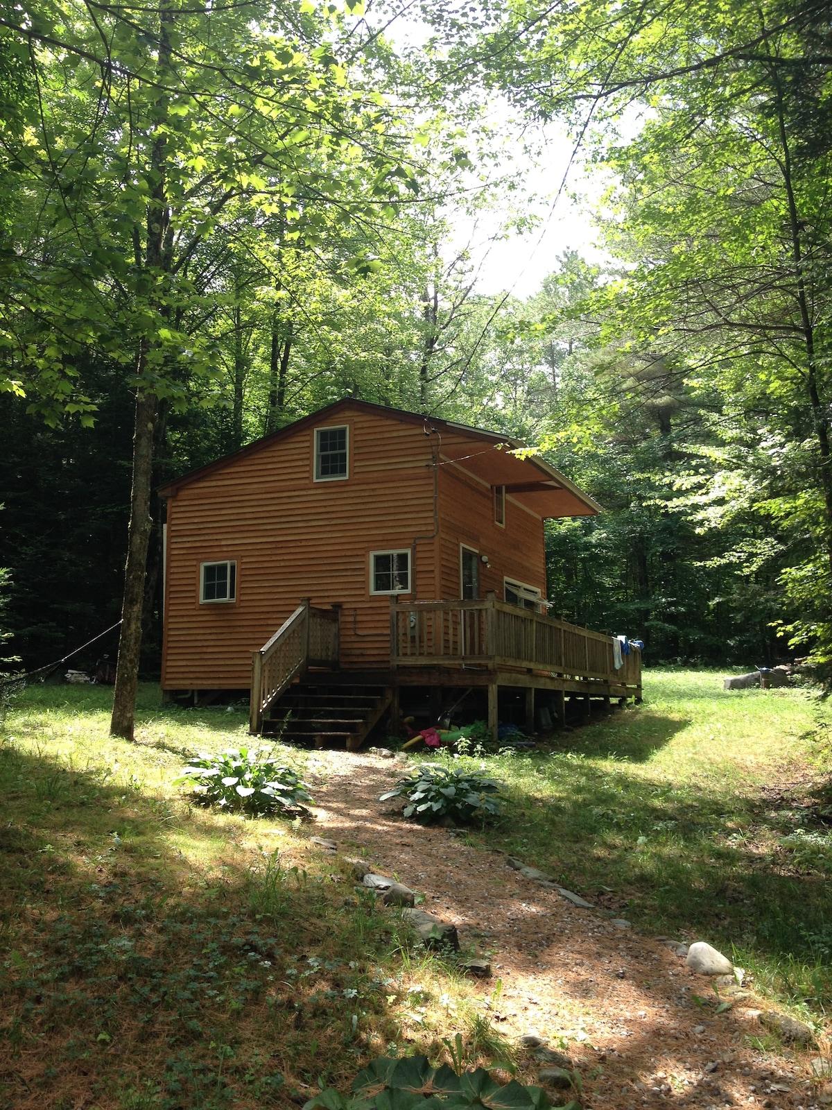 Sugarbush/Blueberry Lake Cabin