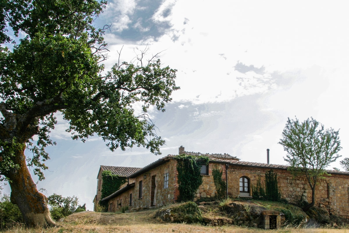 Cosy & large studio in Val d'Orcia