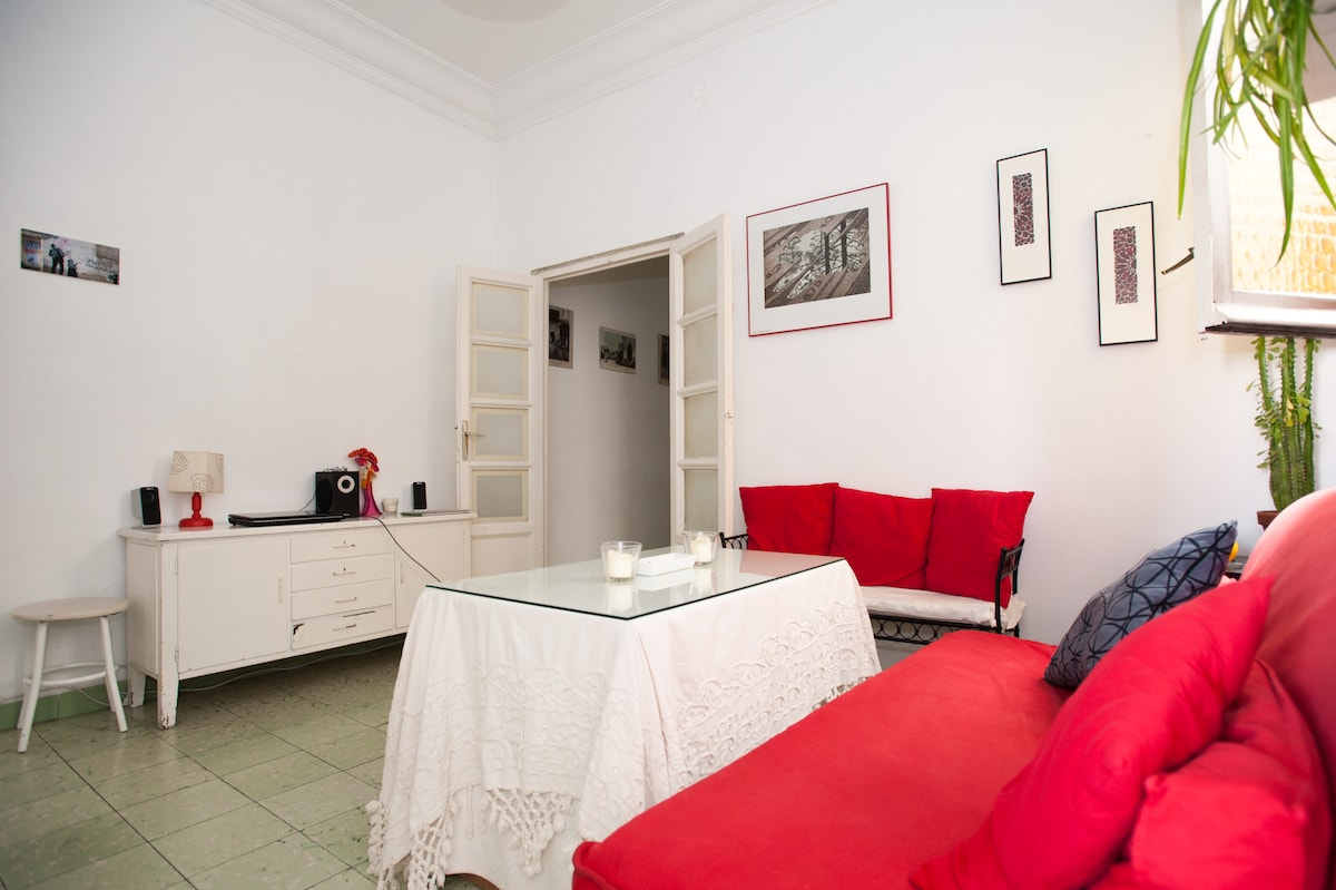 nice and cosy apartment in Seville