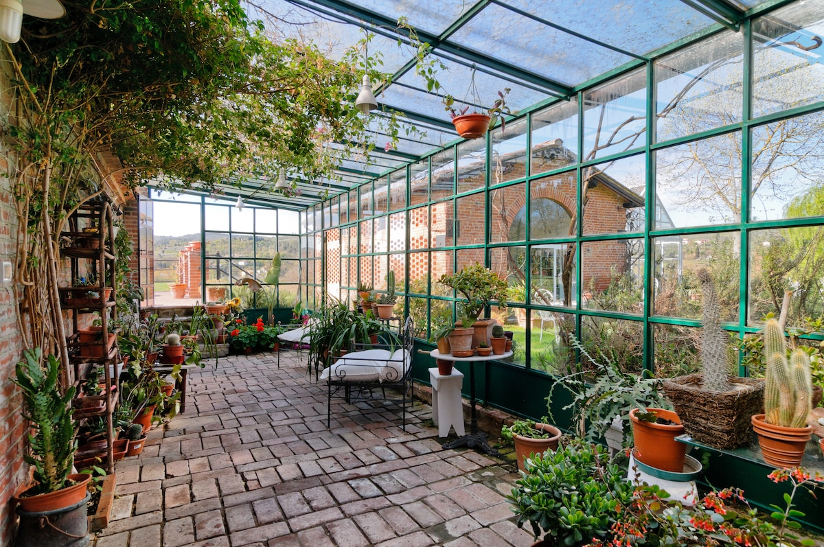 Serra con varie piante ornamentali