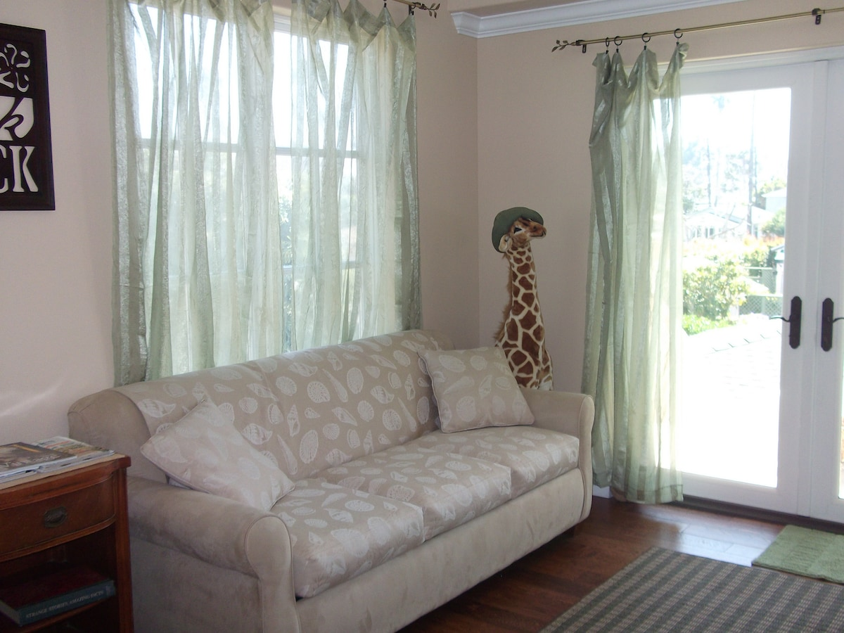 Comfortable couch and queen sleeper bed