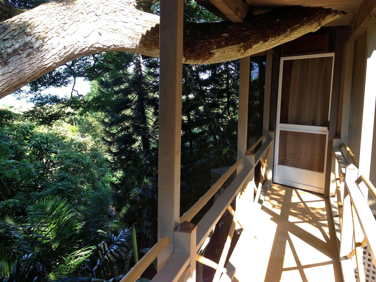 Ohana view from bridge connecting to deck/breakfast area