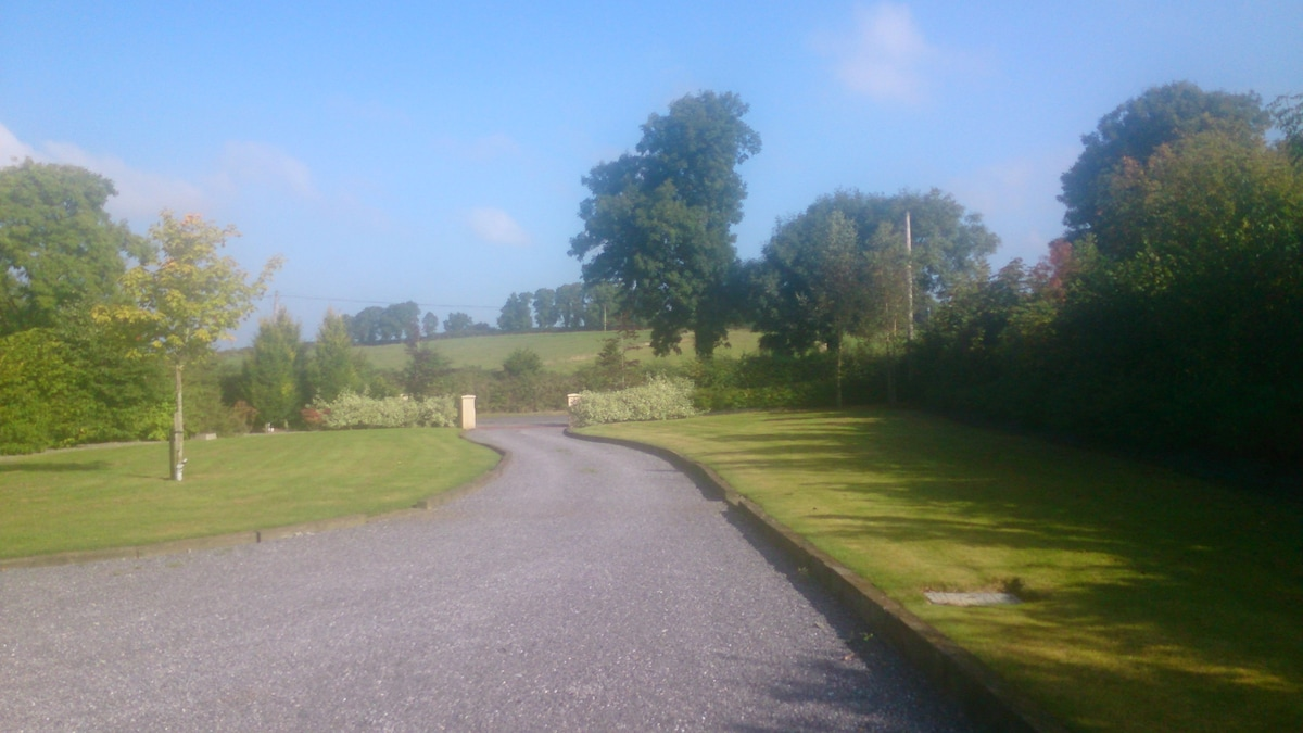 View from the front - a leafy country lane