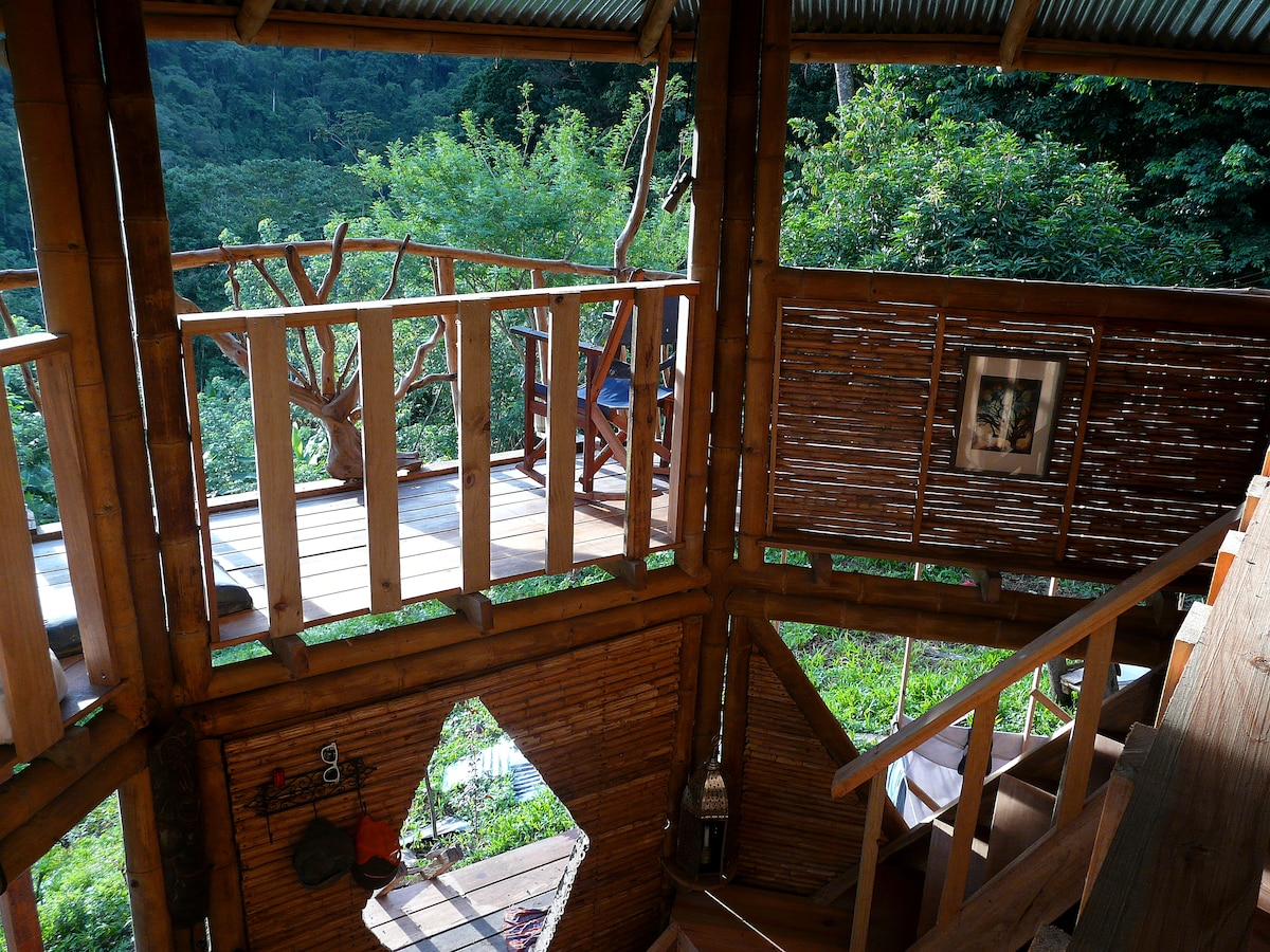 Jungle retreat -bamboo house