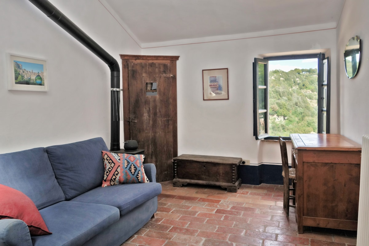 Main room.  Pull out couch and writing desk.  Window onto the river valley.