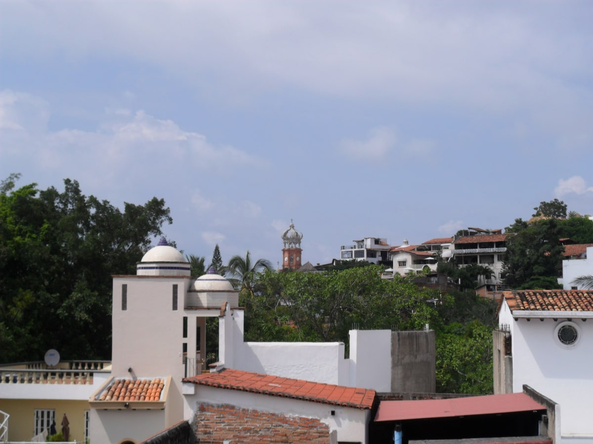 Downtown View from the Terrace