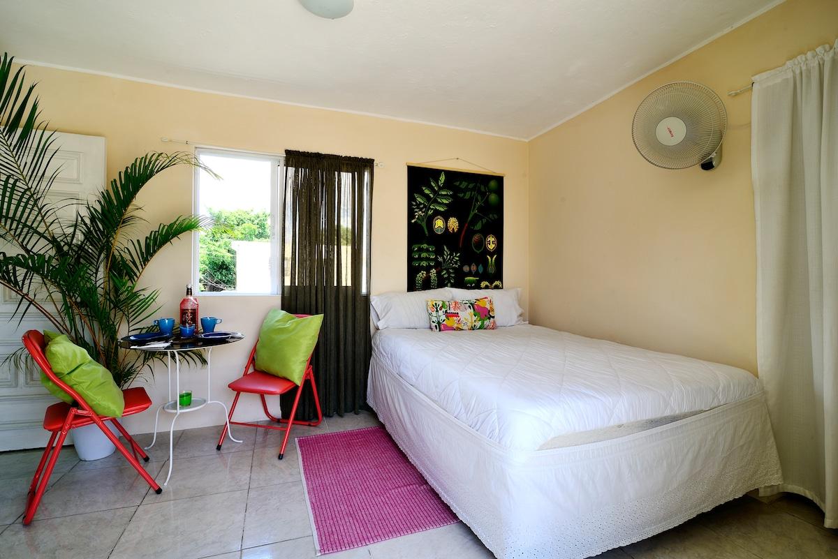 Studio Apartment  in Santo Domingo
