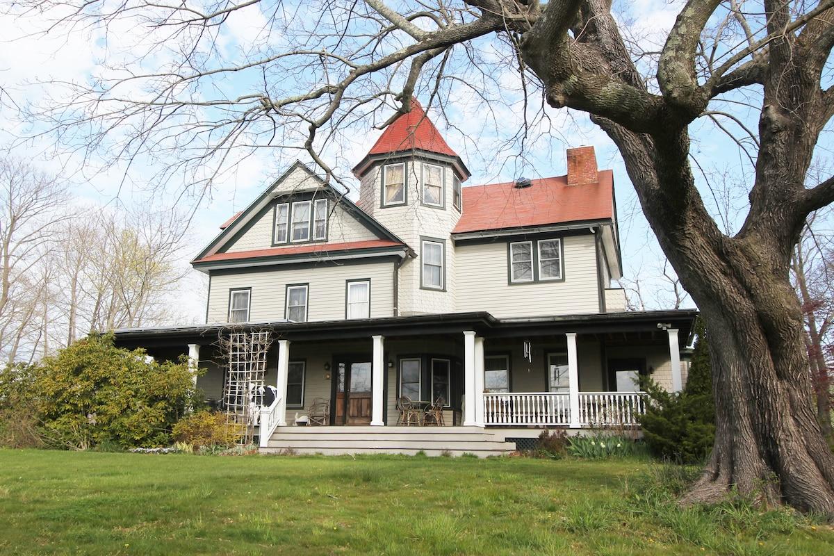 Historic Grand Victorian on Hill #3