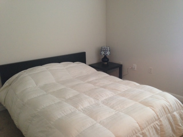 1BR 1BA south congress. Walk to DT