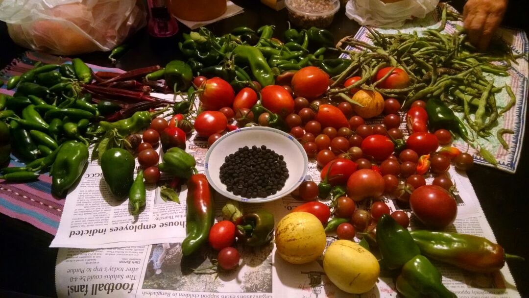 Fall harvest for guests