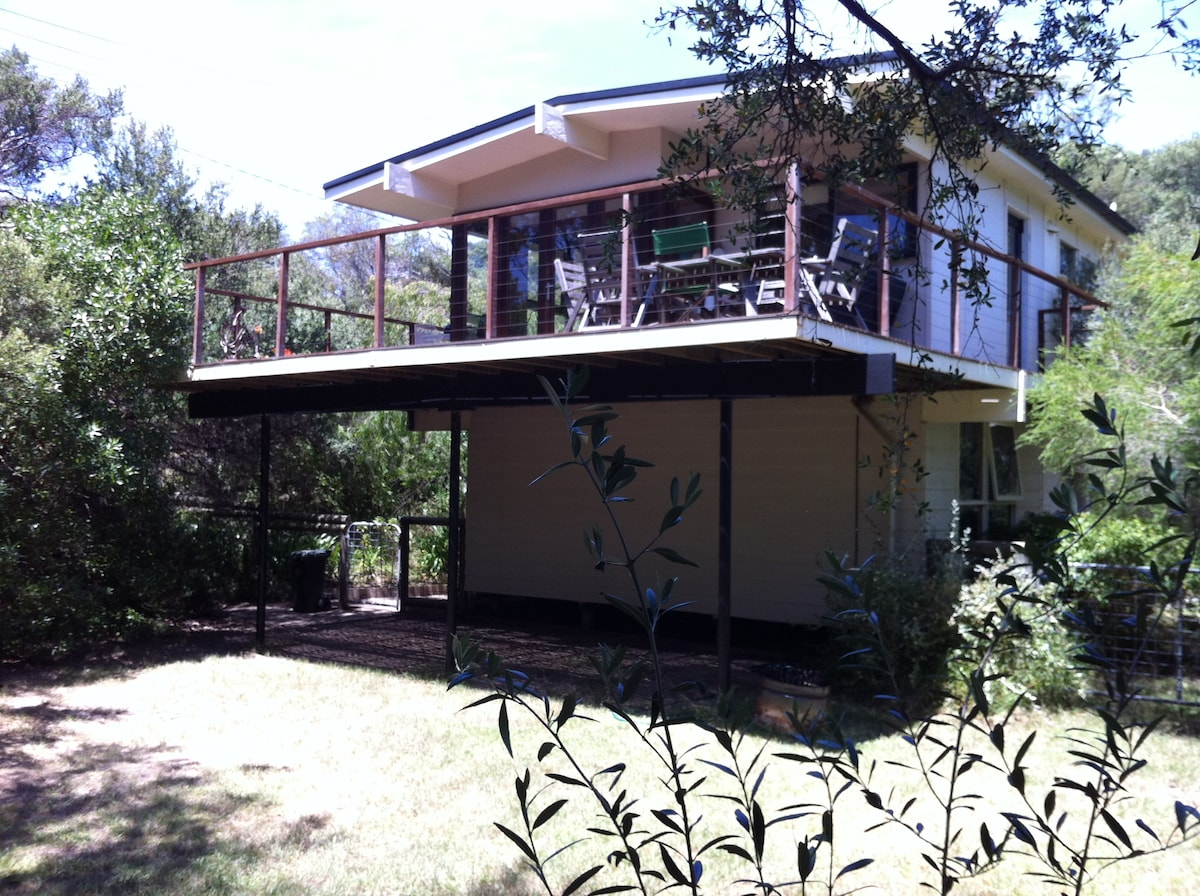 beach house surrounded by native trees