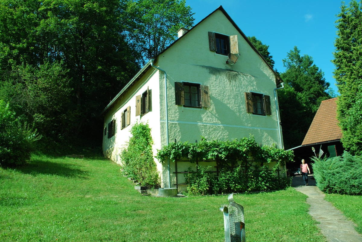 Romantic House in Southern Styria