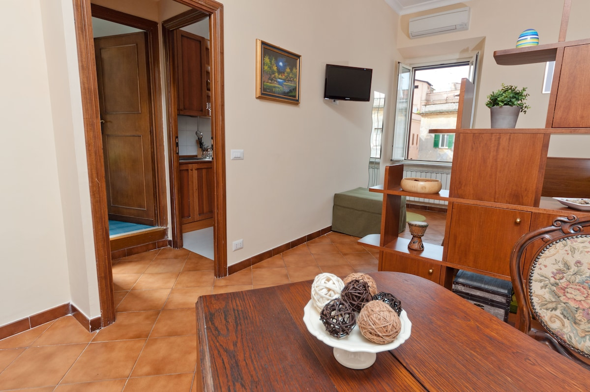 Air conditioning, satellite TV and Internet WI FI in the flat