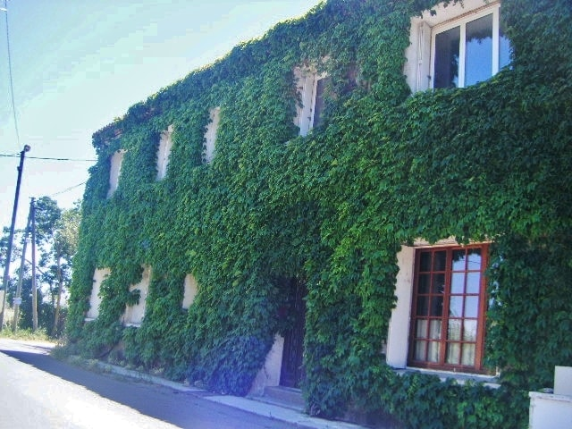 The flat is on the first floor of that old vineyard house/ L'appartement est au premier étage d'une maison vigneronne