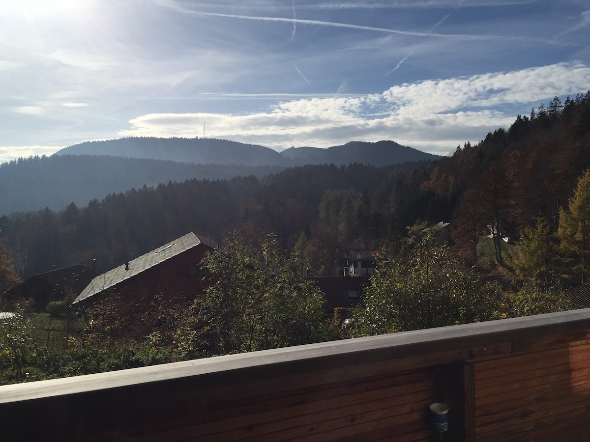 View from the balcony (autumn colours)