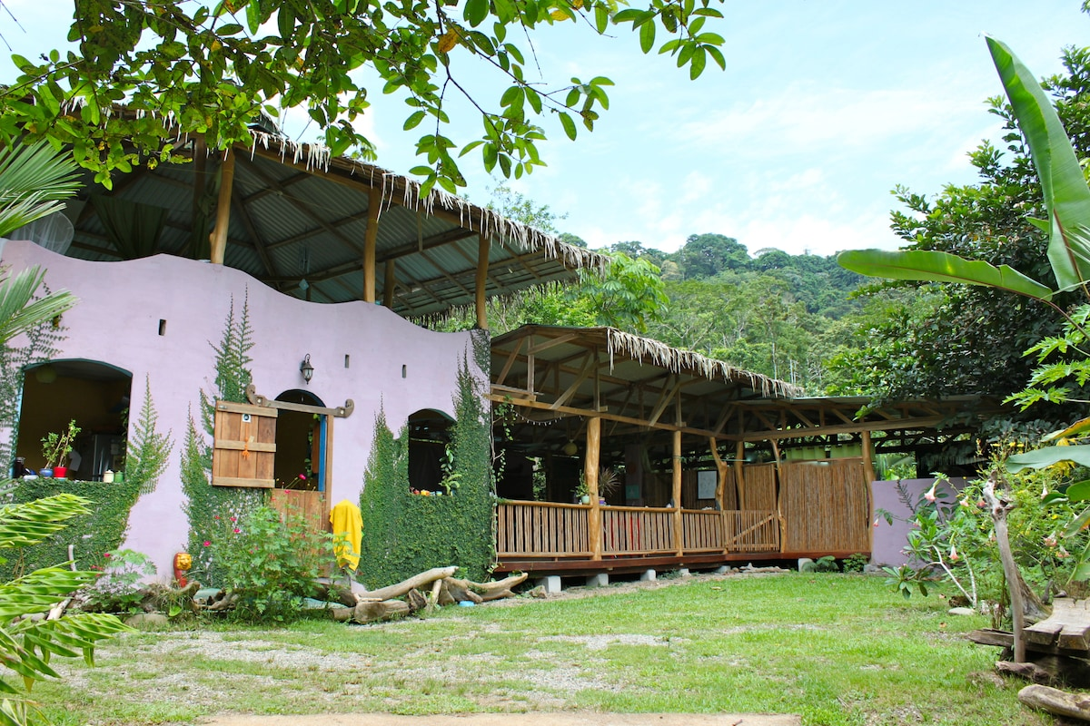 House by the Jungle & open field