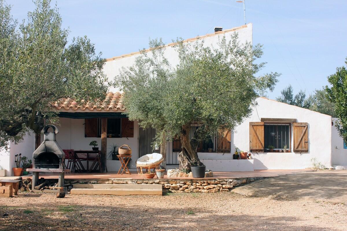 """Casa Rural """"El Viejo Olivo"""""""
