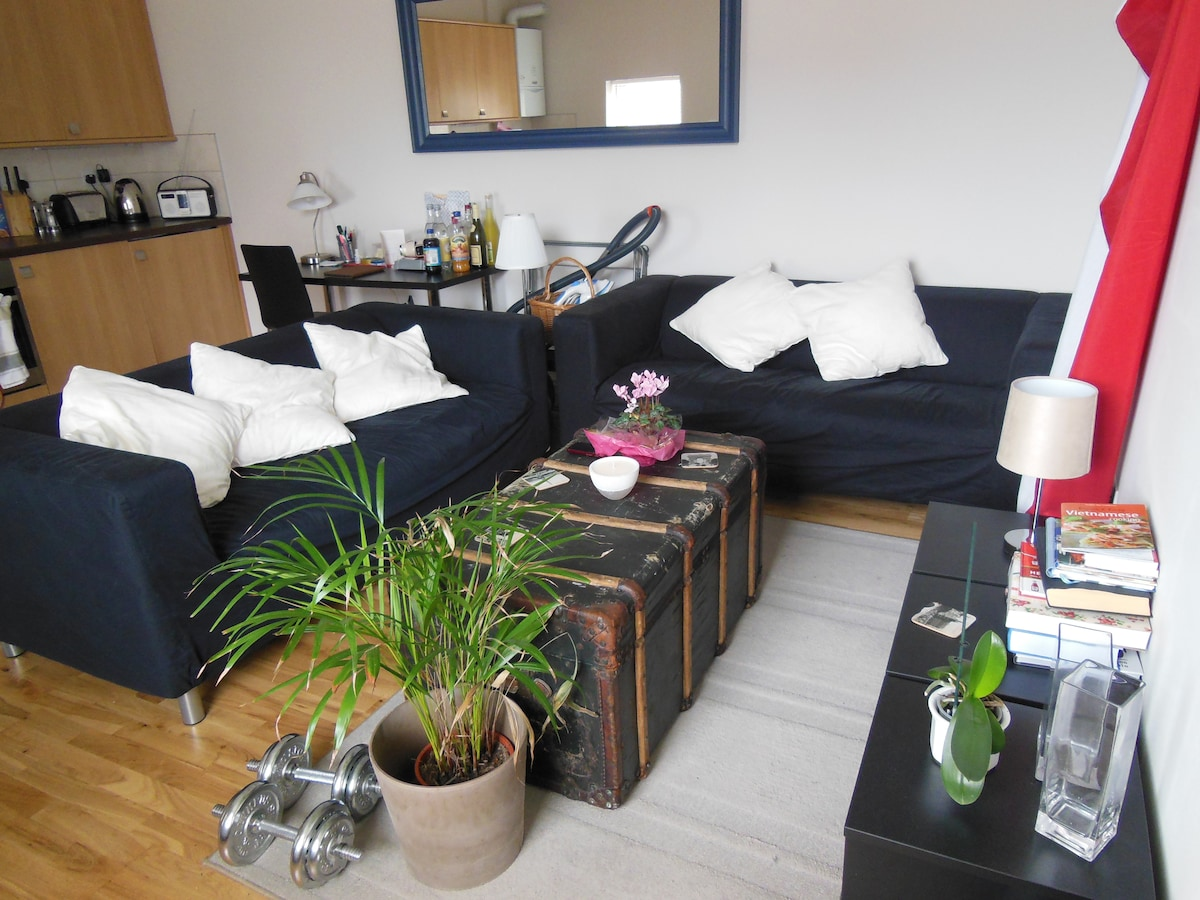 Lovely one bed flat in Putney