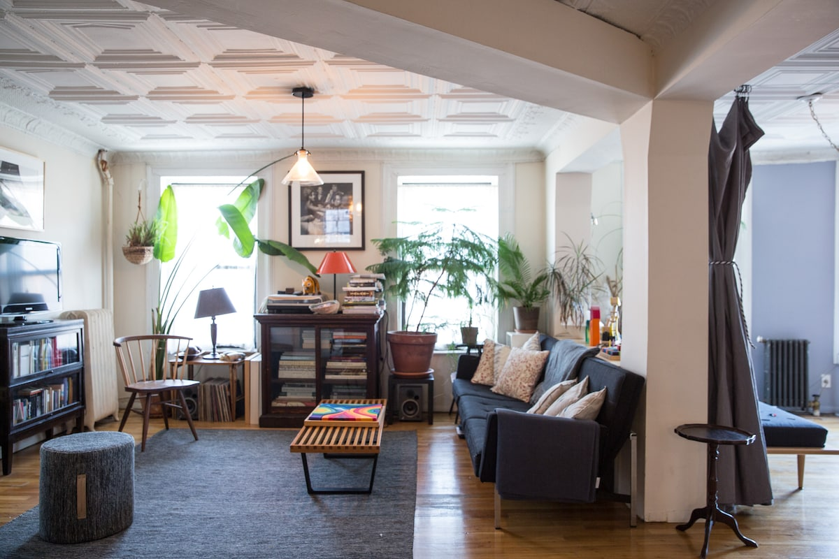 Beautiful apt, heart of fort greene