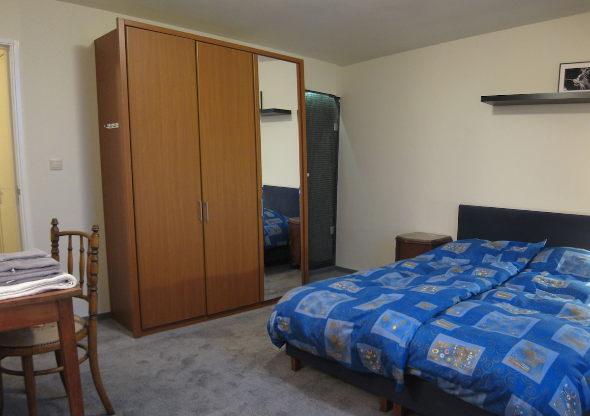Guestroom 1, private shower with a glassdoor in the corner of the room