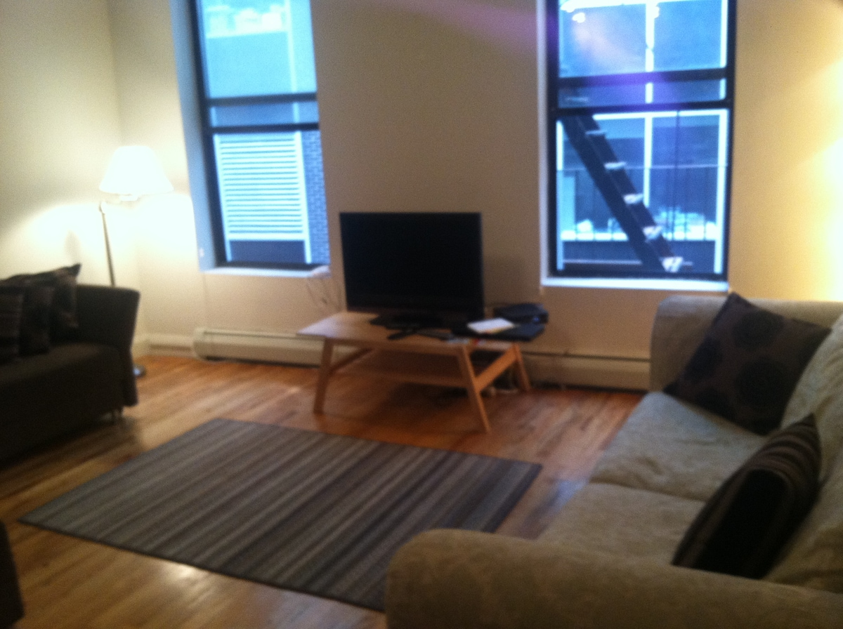 Beautiful 2 bedroom downtown apt