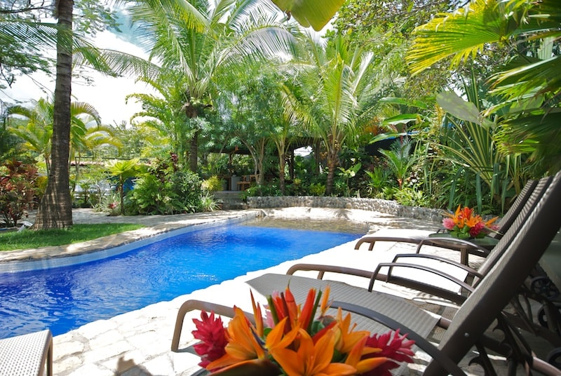 Enjoy a dip in our lush pool