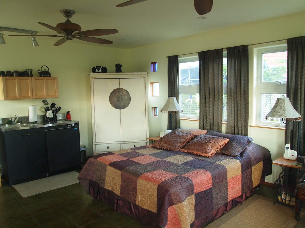 fully equiped studio apartment,  queen bed, jacuzzi tub, fully equipped kitchenette, coffee maker, toaster etc + BBQ