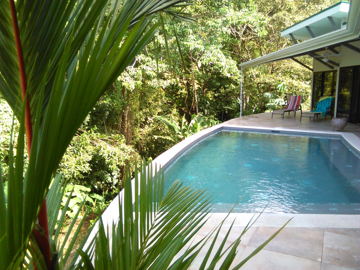 Modern Style  JUNGLE OCEAN VIEW