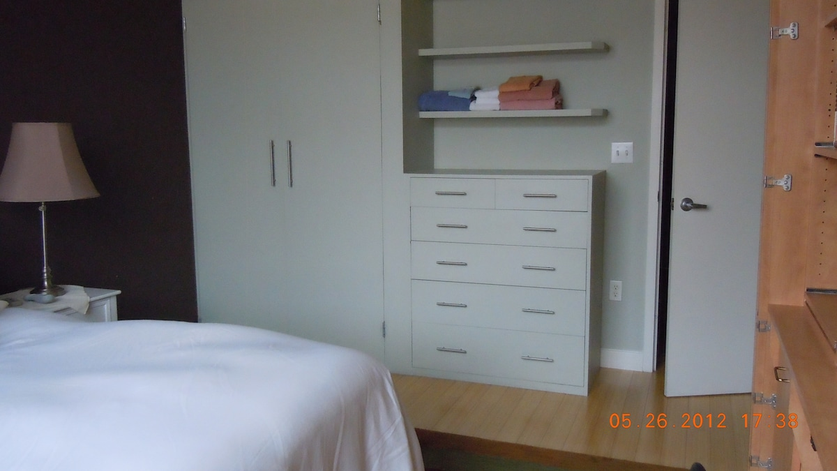 Closet and build-in dresser with shelves