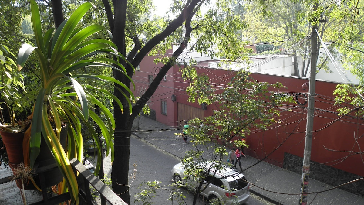 Room for rent in colonial Coyoacan