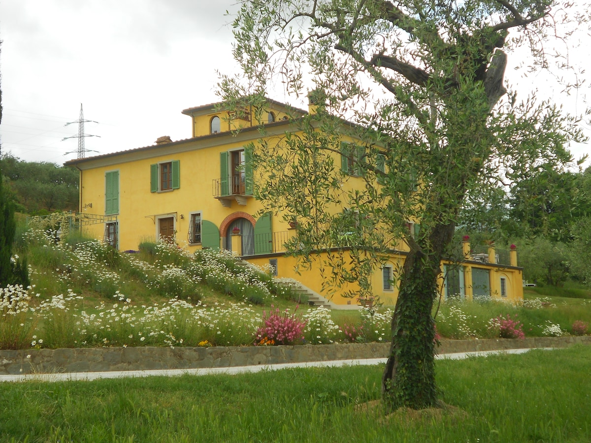 farmhouse near Collodi