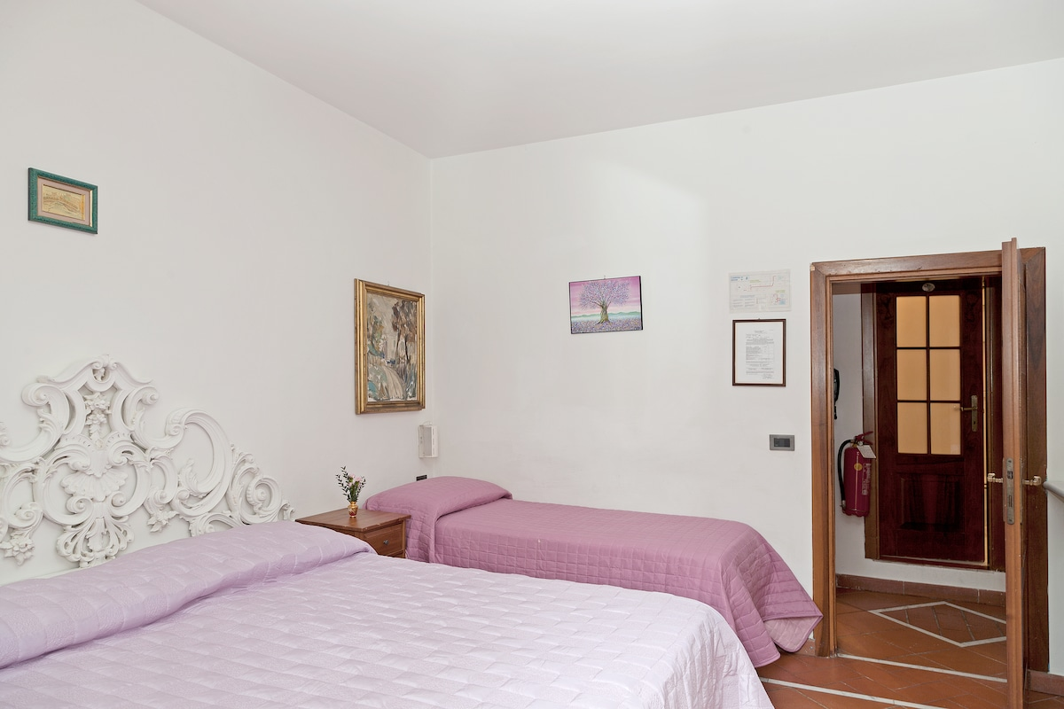 king alex's  single room