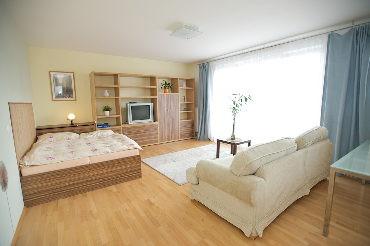 Fully Equipped Apartment + Balcony