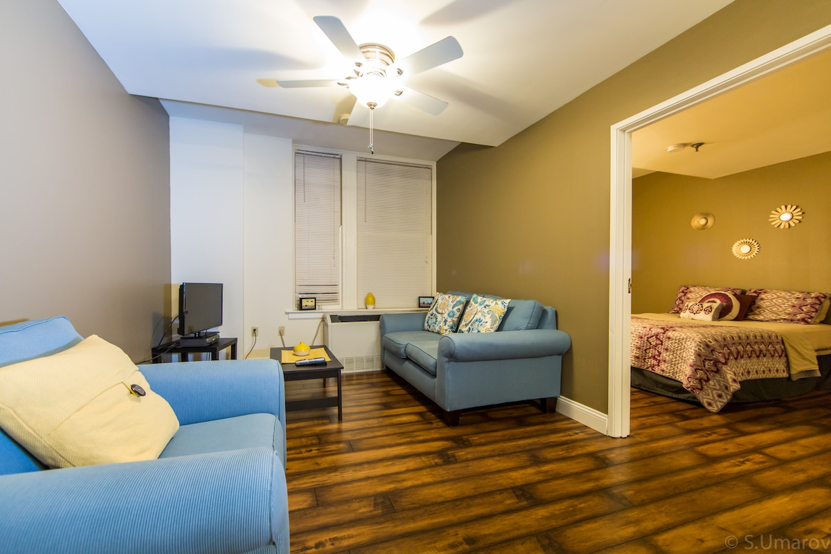 Charming 1 BR in Heart of Memphis