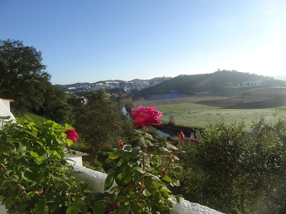 Typical Alentejo House & great view