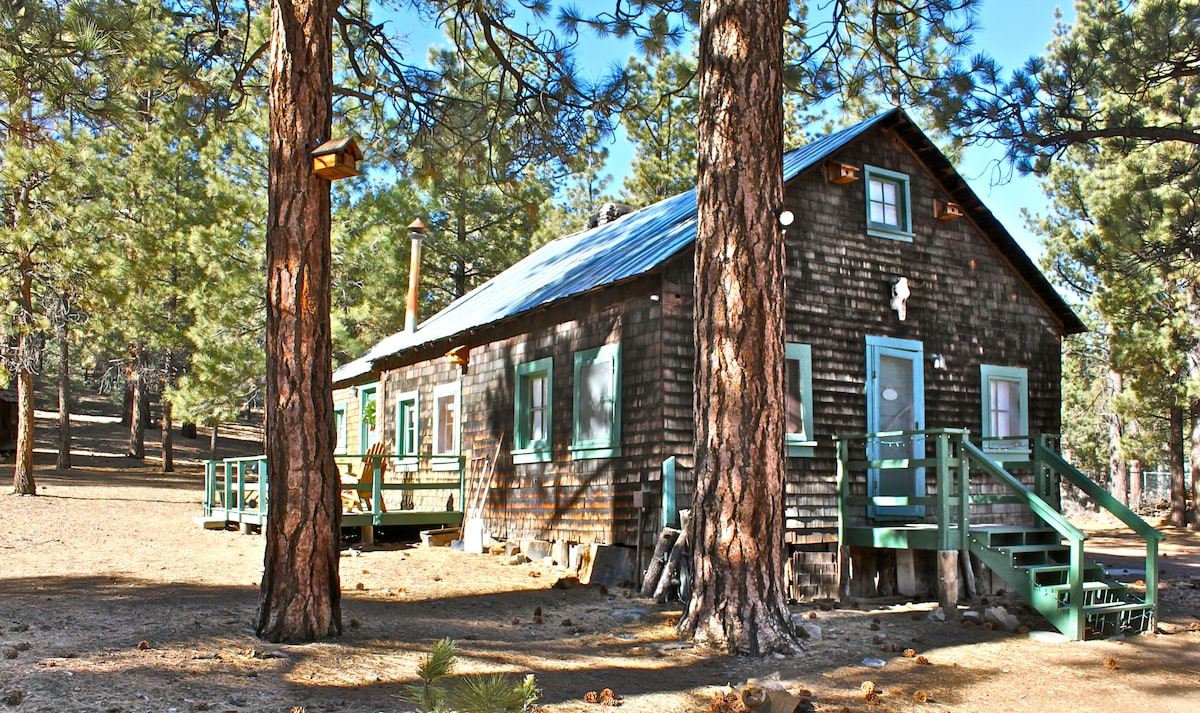 You'll enjoy an abundance of peace and quiet in our Winter Wonderland...just minutes from town...and a short drive from any point in SoCal.
