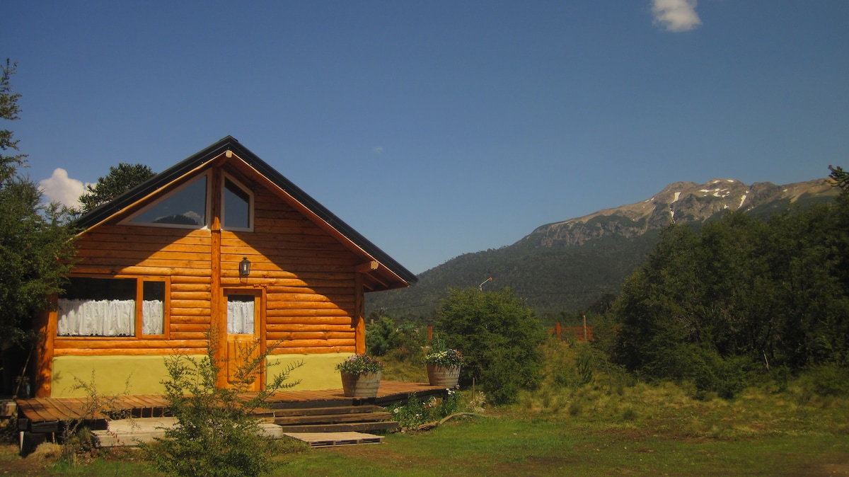 Exclusiva cabaña en bosque nativo