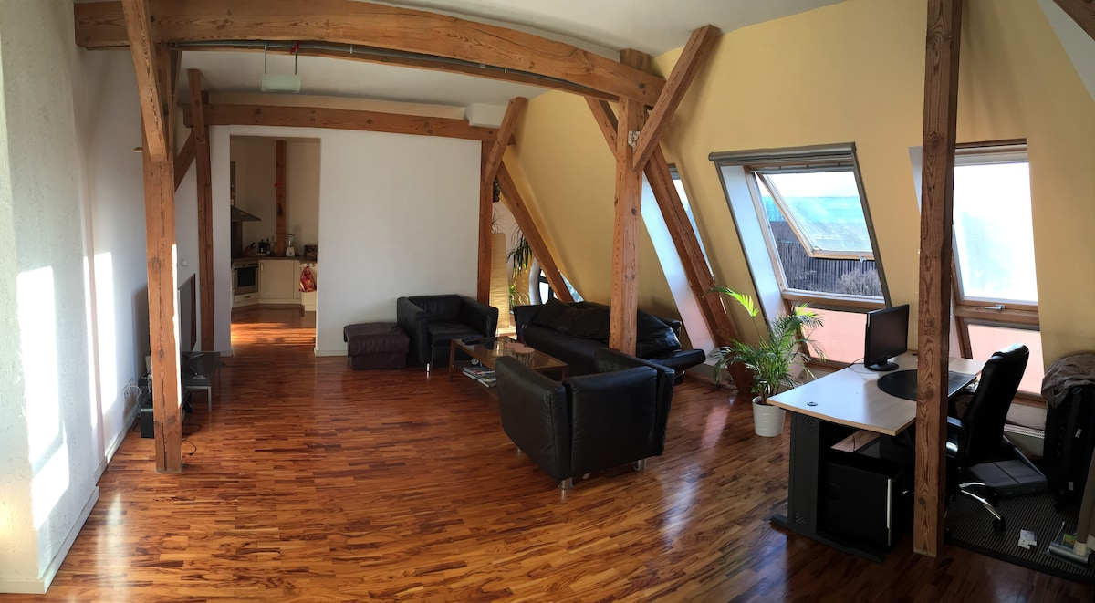 Furnished Rooftop Penthouse 3 Rooms